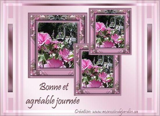 © Mon Coin de Jardin